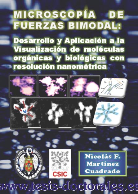 Tesis_Doctoral_0006.png