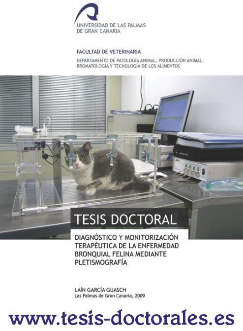 Tesis_Doctoral_0017.png
