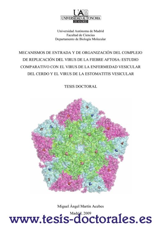 Tesis_Doctoral_0019.png