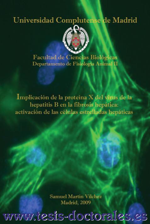 Tesis_Doctoral_0049.png