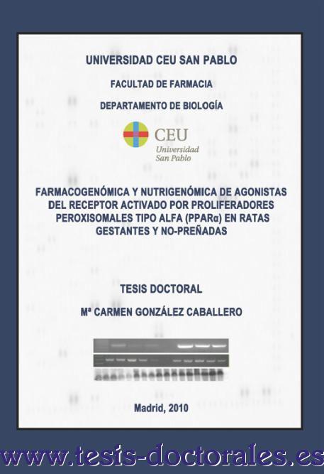 Tesis_Doctoral_0053.png