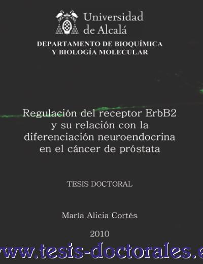 Tesis_Doctoral_0115.png