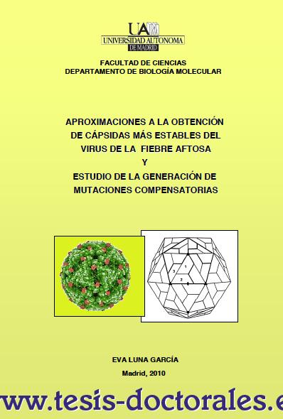 Tesis_Doctoral_0119.png
