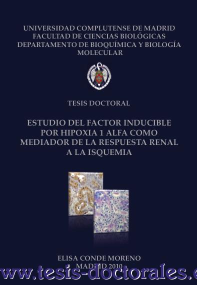 Tesis_Doctoral_0122.png
