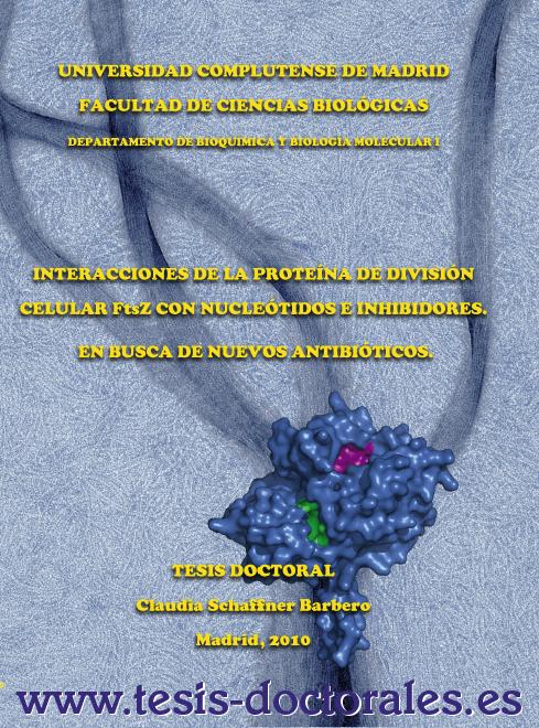 Tesis_Doctoral_0124.png
