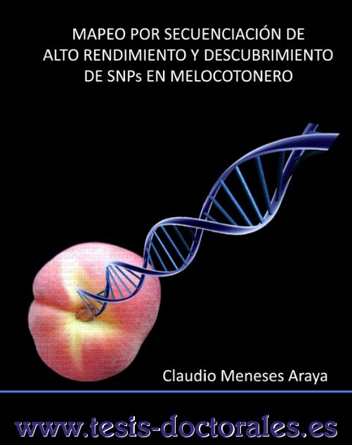 Tesis_Doctoral_0164.png
