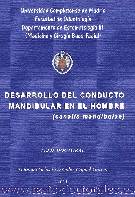 Tesis_Doctoral_0167.png