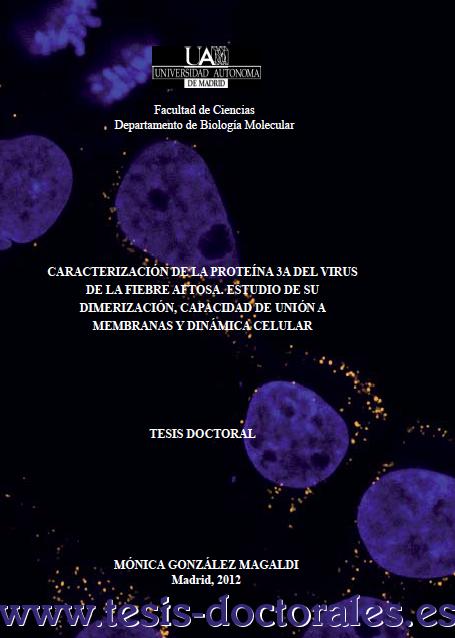 Tesis_Doctoral_0189.png