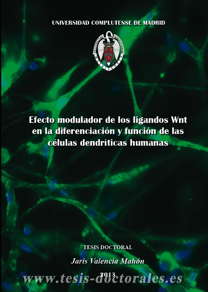 Tesis_Doctoral_0223.png