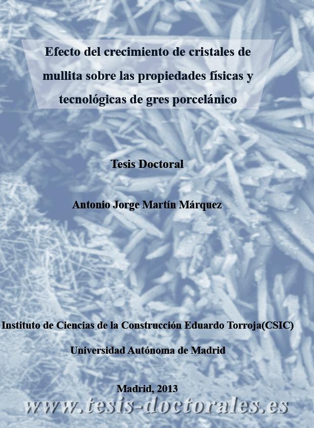 Tesis_Doctoral_0233.png
