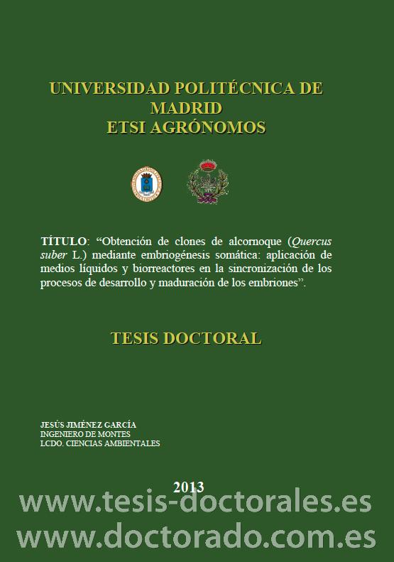 Tesis_Doctoral_0239.png