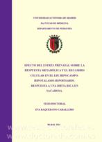 Tesis_Doctoral_0308.png