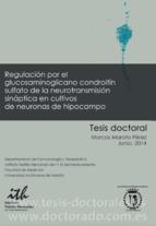 Tesis_Doctoral_0332.png